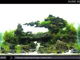 Aquascaping Rocks 98 Best Aquarium Images On Pinterest Aquarium Ideas Planted