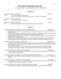 Examples Of Objective Statements On Resumes Sample Objective Statements For Resume Sample Resume Format