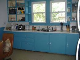 blue painted kitchen cabinets interior design