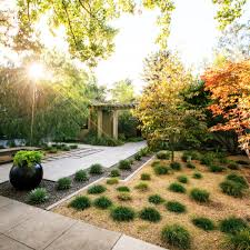 landscaping without grass sunset pics with mesmerizing backyard