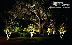 Tree Lights Landscape Landscape Tree Lighting Landscape Lighting Tree Mount