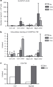 vsv oncolytic virotherapy in the b16 model depends upon intact
