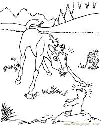 donkey groundhog coloring free groundhog