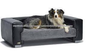 canapé lit pour chien canapés en cuir pour chiens lit pour chien de luxe d autres meubles