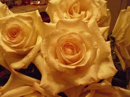 golden roses golden roses jesus my lord and savior
