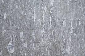 quartzite flooring for posh outlook an guide to quartzite tile