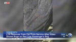 cta rider says woman carrying bedbug infested bag got back on cta rider says woman carrying bedbug infested bag got back on train abc7chicago com