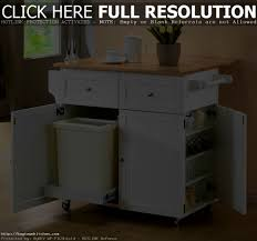 bathroom enchanting images about kitchen organization and