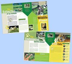 zoo brochure template membership brochure template fieldstation co