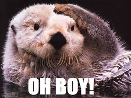 Sea Otter Meme - oh boy know your meme