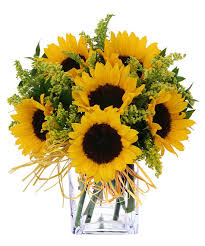 sunflower delivery endless sunflowers kansas city florist flower delivery kansas city