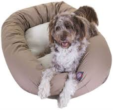 Tempur Pedic Dog Bed 11 Of The Greatest Dog Beds In The History Of Dog Beds The Barkpost