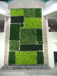 bright green living wall uk best images on vertical gardens walls