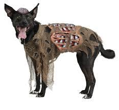 headless horseman costume headless horseman dog costume korrectkritterscom