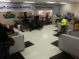 affordable dog bathing and grooming in salem or