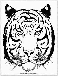 excellent coloring pages of tigers top child c 6913 unknown