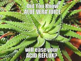 Heartburn Meme - natural heartburn relief and home remedies for acid reflux