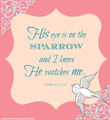 his eye is on the sparrow scripture christin ditchfield