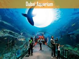 10 best family places in dubai that you must visit