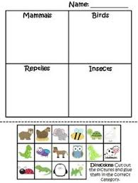 vertebrate vs invertebrate venn diagram vertebrates and