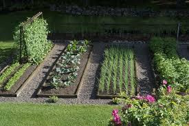 Backyard Vegetable Garden Ideas Vegetable Garden Ideas Webzine Co