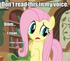 My Little Ponies Meme - fluttershy my little pony meme my best of the funny meme