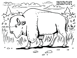 awesome animal coloring pages birds with and deer 70 forest