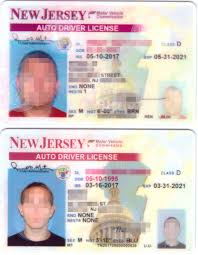 dingofakes new jersey instate review with scans fakeid