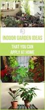 2042 best organic gardening farming images on pinterest