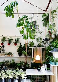 native plant nurseries melbourne the plant society a new permanent location in collingwood