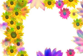 free background birthday images and stock photos freeimages com
