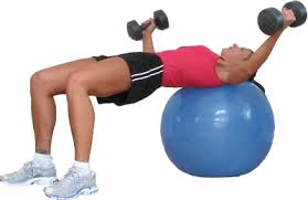 Flat Bench Db Fly Chest Archives Sprint 2 The Table