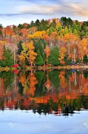 forest of colorful autumn trees reflecting in calm lake stock