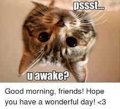 Good Morning Sunshine Meme - good morning sunshine meme