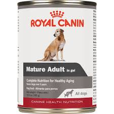 royal canin canine health nutrition mature in gel wet dog