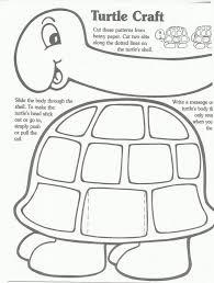 turtleteachersfriend jpg 1 208 1 600 pixels reptiles and