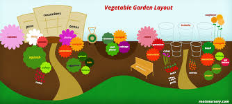 Garden Layout Companion Planting Vegetable Garden Layout