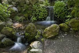 Berkeley Botanical Gardens Berkeley Botanical Garden Waterfall Mapio Net