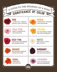 what do different colors mean english garden bouquet from grocery store flowers rose what color