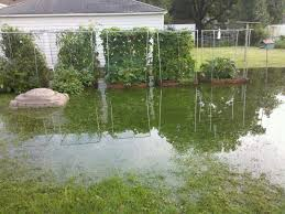Drainage Ideas For Backyard by Download Backyard Flooding Solutions Garden Design