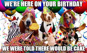 Birthday Cake Dog Meme - birthday imgflip