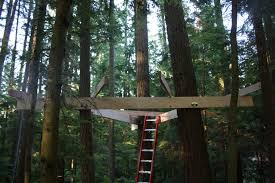free a frame treehouse plans