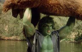 incredible hulk tv series bill bixby lou ferrigno profile