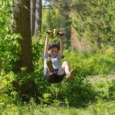 are backyard ziplines safe home outdoor decoration