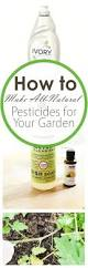 gardening tips best 25 gardening hacks ideas on pinterest organic gardening