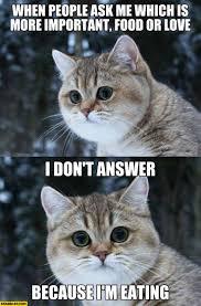 Why Me Meme - food starecat com page 6