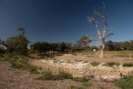 native plants south australia news construction u0026 development news and events mawson green