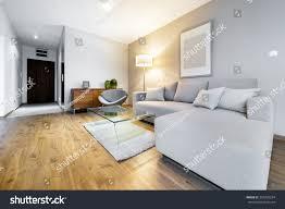 modern living room interior design apartment stock photo 354228254