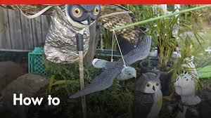 how to deter birds u0026 pests from your garden diy at bunnings