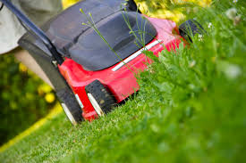 lawn care safety protecting the most important thing in your yard